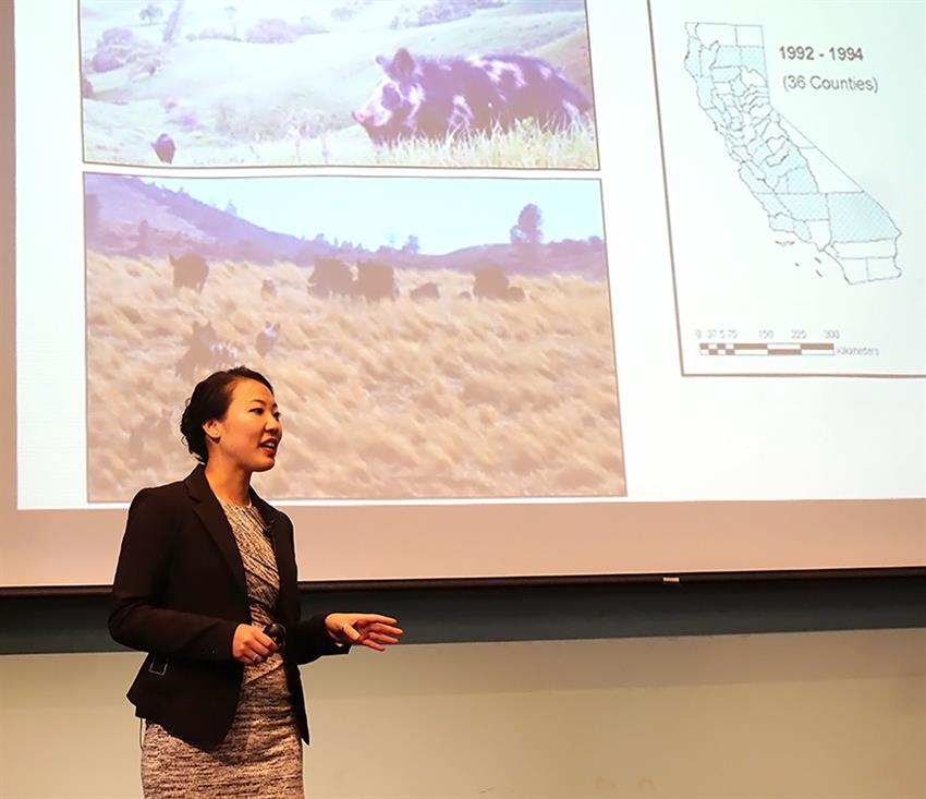 Elizabeth Hiroyasu talked about why wild pigs are important. Credit: Patricia Marroquin