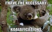 koalifications