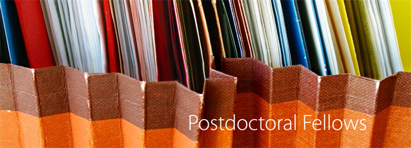 Postdoctoral fellowship in migration and the humanities