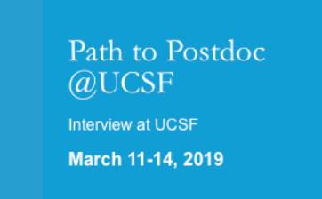 Path to Postdoc
