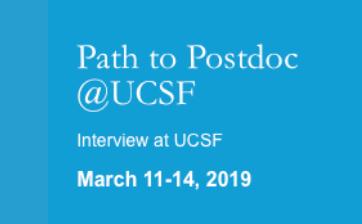 Path to Postdoc