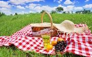 picnic-thumbnail