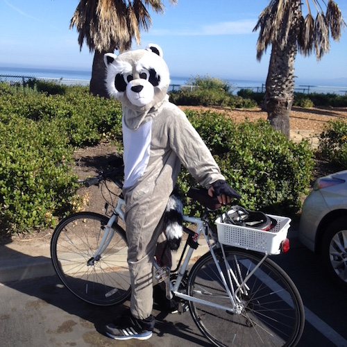 It's hard to convince people to participate in research studies! Team raccoon got creative to spread the word about Project Raccoon!
