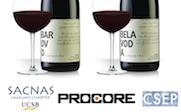 sacnas-wine-mixer-thumbnail