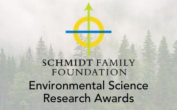 schmidt research thumbnail